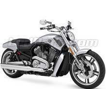 V-Rod Muscle 1250