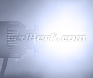 Motorcycle H1 COB LED Bulb Kit LED Haute Performance H1