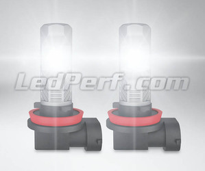 H11 Osram LEDriving Standard LED bulbs for fog lights in operation
