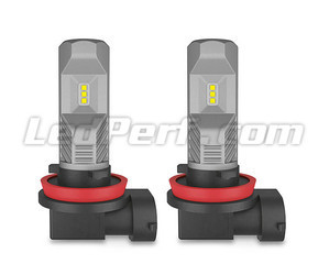 Pair of H11 Osram LEDriving Standard LED Bulbs for Fog Lights - 67219CW