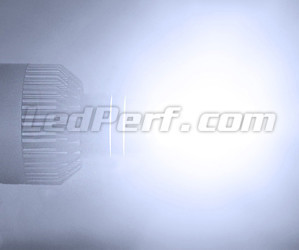 H7 LED Bulbs Special VW Audi Skoda Seat Porsche And Mercedes Rendering