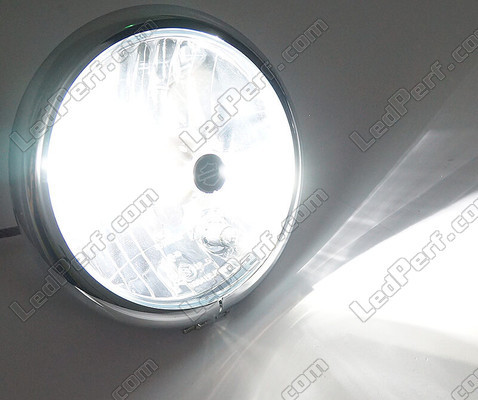Motorcycle H7 LED Bulb Adjustable - Pure White Lighting