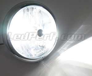 Motorcycle H9 LED Bulb Adjustable - Pure White Lighting