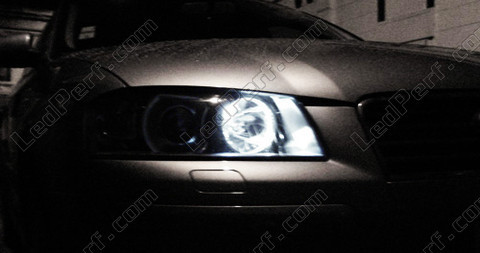 LED sidelight bulbs for Audi A3 with anti-OBC error LEDs xenon