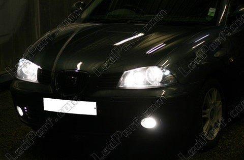 pack headlights xenon effect bulbs for seat ibiza 6l. Black Bedroom Furniture Sets. Home Design Ideas