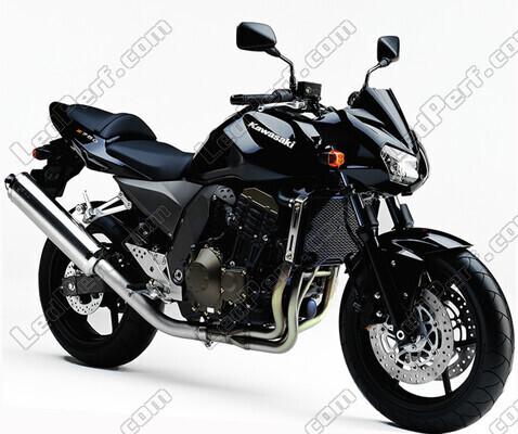Pack Headlights Xenon effect bulbs for Kawasaki Z750 (2004 - 2006)