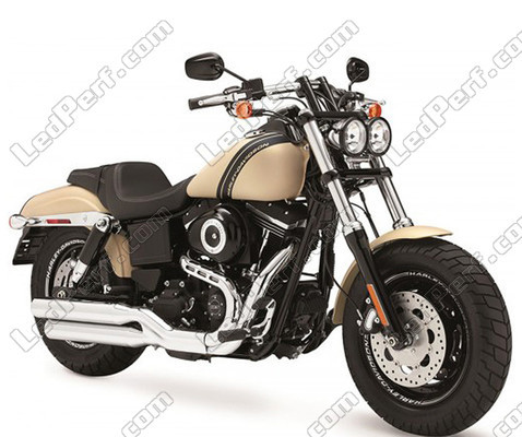 Harley-Davidson Fat Bob 1690 Canbus Bi Xenon HID conversion Kit ...
