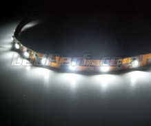 24V 50cm white flexible strip with (30 leds SMD)