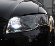 Pack daytime running light (DRL) xenon white for Audi A4 B7