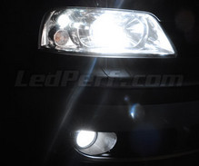 Pack Xenon Effects headlight bulbs for Seat Alhambra 7MS