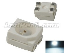 TL LED PLCC4 - White - 400mcd