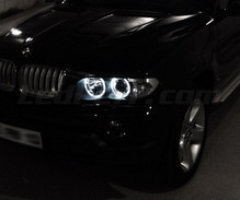 Pack LED angel eyes for BMW X5 E53 - Standard