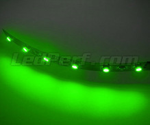 Standard flexible strip with 6 SMD LED TL Green