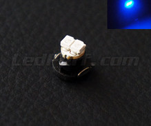 Blue 12V LED on bracket (T4.2)