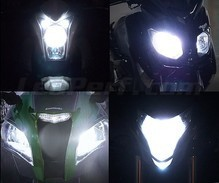 Pack Xenon Effects headlight bulbs for Kymco Xciting 500 (2009 - 2014)
