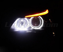 Pack LED angel eyes BMW 5 Series E60 E61 Ph 2 (LCI) - with original xenon - Stand