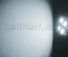 Pack sidelights LED (xenon white) for Volkswagen Lupo