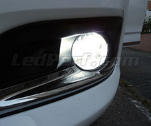 Pack Fog lamps Xenon effect for Citroen C4 II