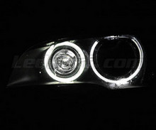 Pack Led H8 Angel Eyes (Pure White 6000K) for BMW X5 (E70) - Standard