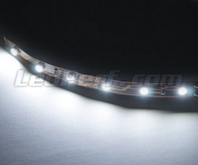 Standard flexible strip of 6 white LEDs smd TL