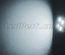 Pack sidelights LED (xenon white) for Dacia Duster (pre-facelift)