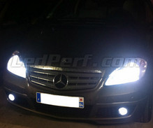 Pack Xenon Effects headlight bulbs for Mercedes A Class W169