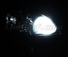 Pack sidelights LED (xenon white) for Kia Pro Ceed Ceed and 1