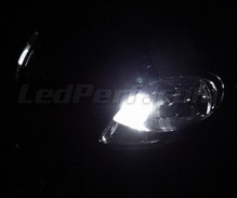 Pack sidelights LED (xenon white) for Renault Trafic