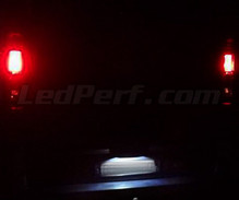 LED Licence plate pack (xenon white) for Renault Trafic