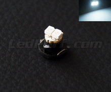 White 12V LED on bracket (T4.2)