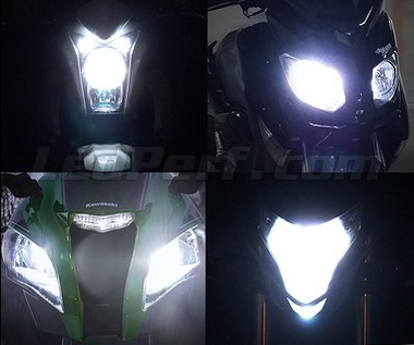 Pack Xenon Effects headlight bulbs for Yamaha XSR 700 XTribute