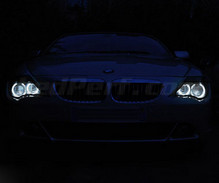 Pack LED angel eyes for BMW 6 Series (E63 E64) Phase 1 - With original Xenon-Standar