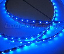 24V 1-metre blue flexible strip (60 leds SMD)