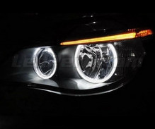 Pack LED angel eyes BMW 5 Series E60 E61 Ph 2 (LCI) - Without original xenon
