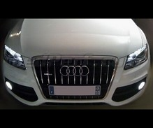Pack fog lamps Xenon Effect Audi Q5