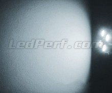 Sidelights LED Pack (xenon white) for Suzuki Grand Vitara