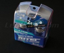 Pack of 2 bulbs H8 MTEC Cosmos Blue - White xenon